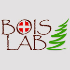 145_bois-lab logo
